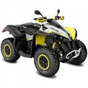 CAN-AM RENEGADE 650 XXC T ABS 2019